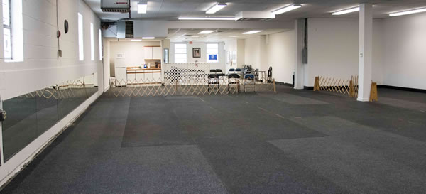Indoor matted training room at FirstDog Training Club